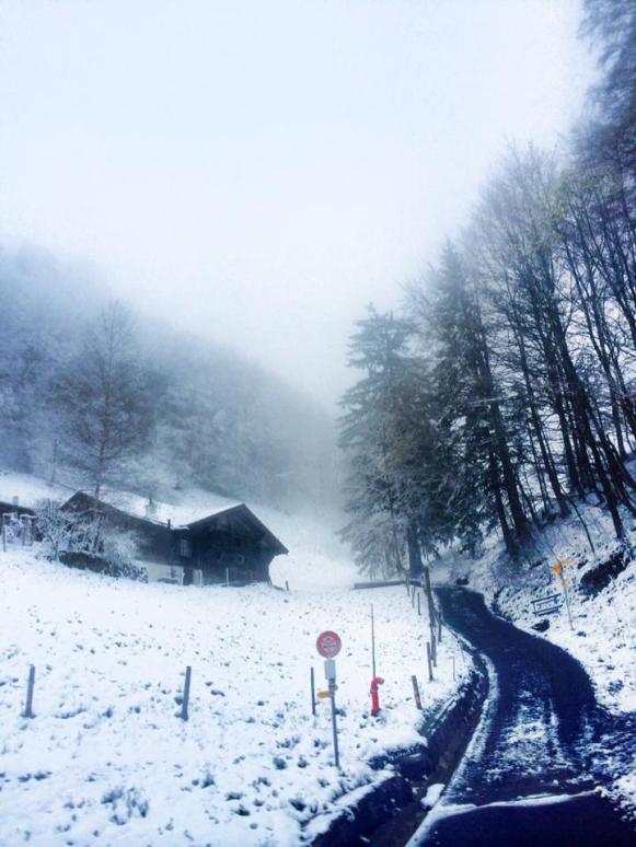 Snow fall 4