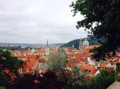 1.1398988800.3-view-of-prague-from-the-castle-grounds