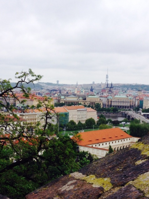 1.1398988800.view-of-prague-from-the-castle-grounds