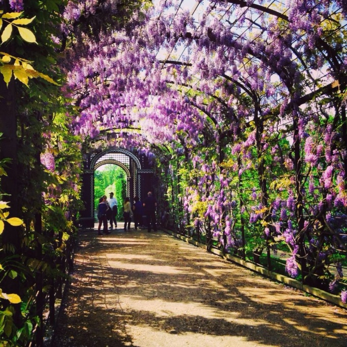 1.1398505664.4-palace-gardens