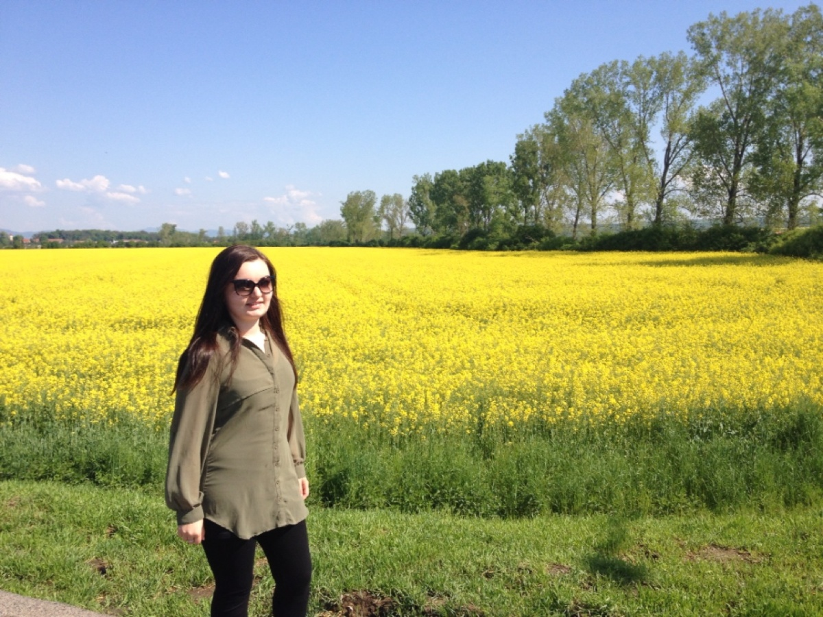 1.1398643200.slovakia-flower-fields