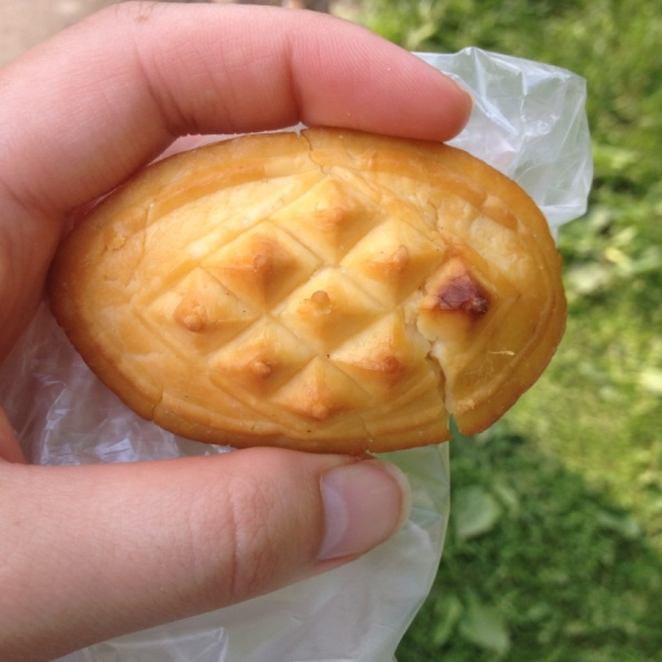 Traditional polish treat - pastry with cheese inside